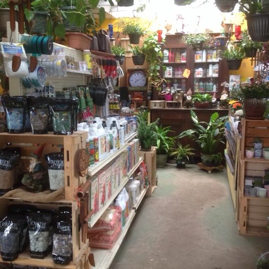 inside-store